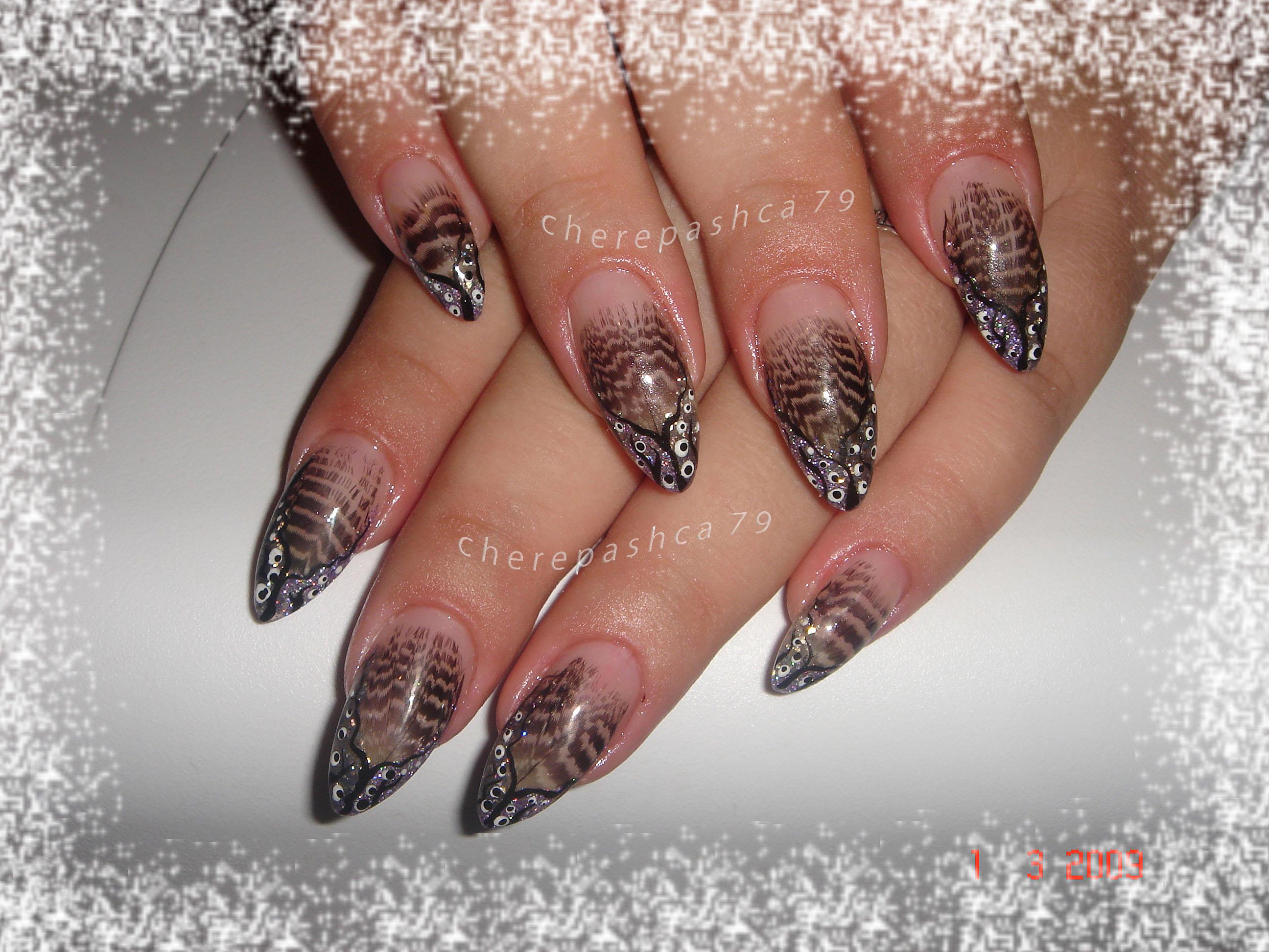 Ногти с рисунком перышка фото